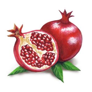 pomegranates_750px_square