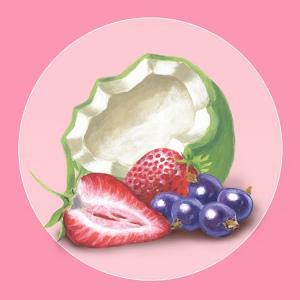 strawberry_coconut_square